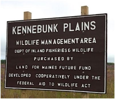 Kennebunk Plains Wildlife Management Area