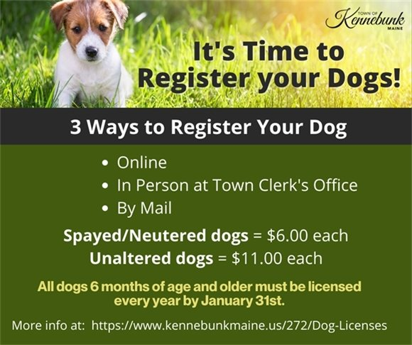 Don't forget to register your dogs for 2021!